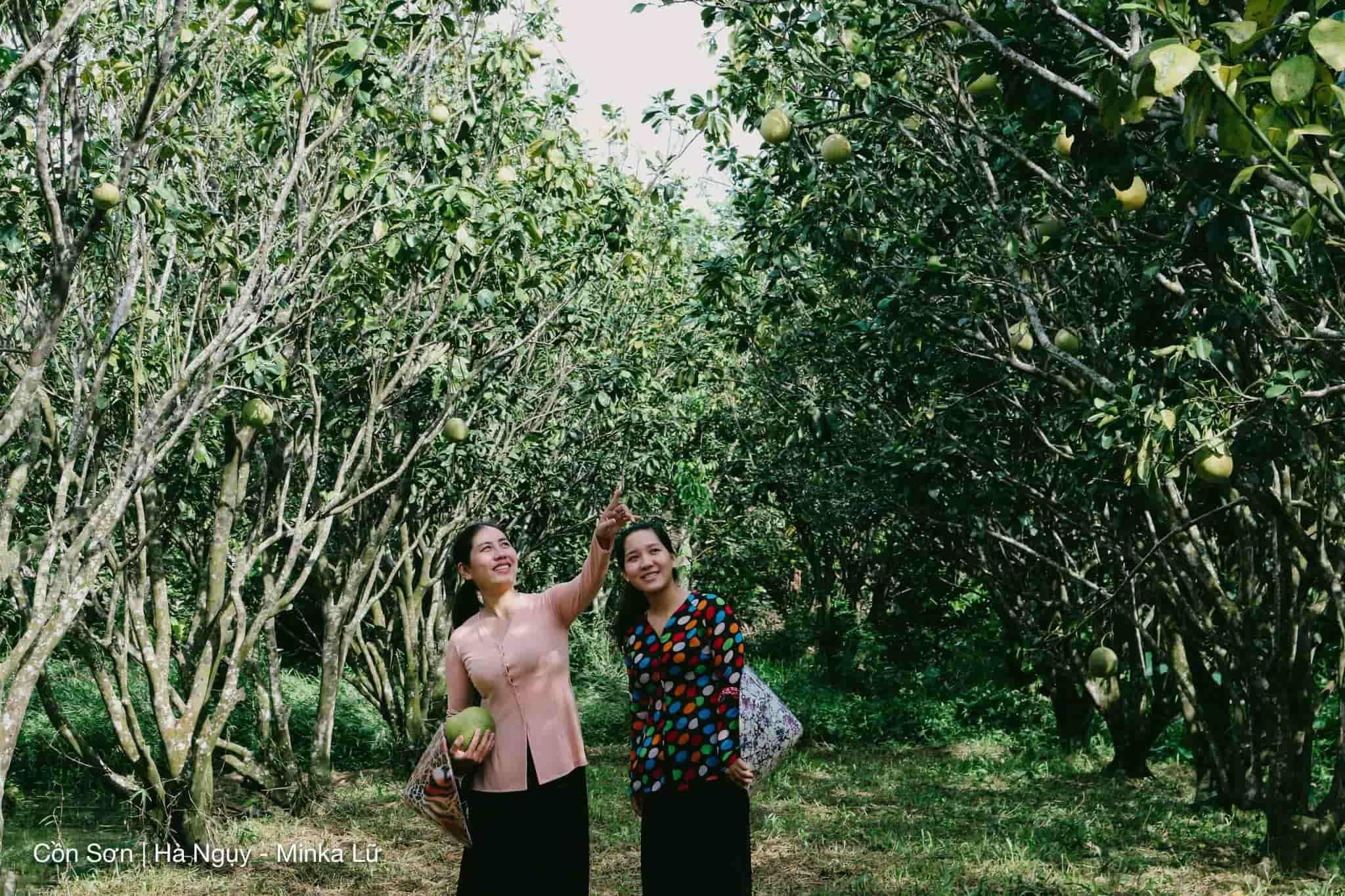 Cồn Sơn- khu du lịch Cần Thơ miệt vườn