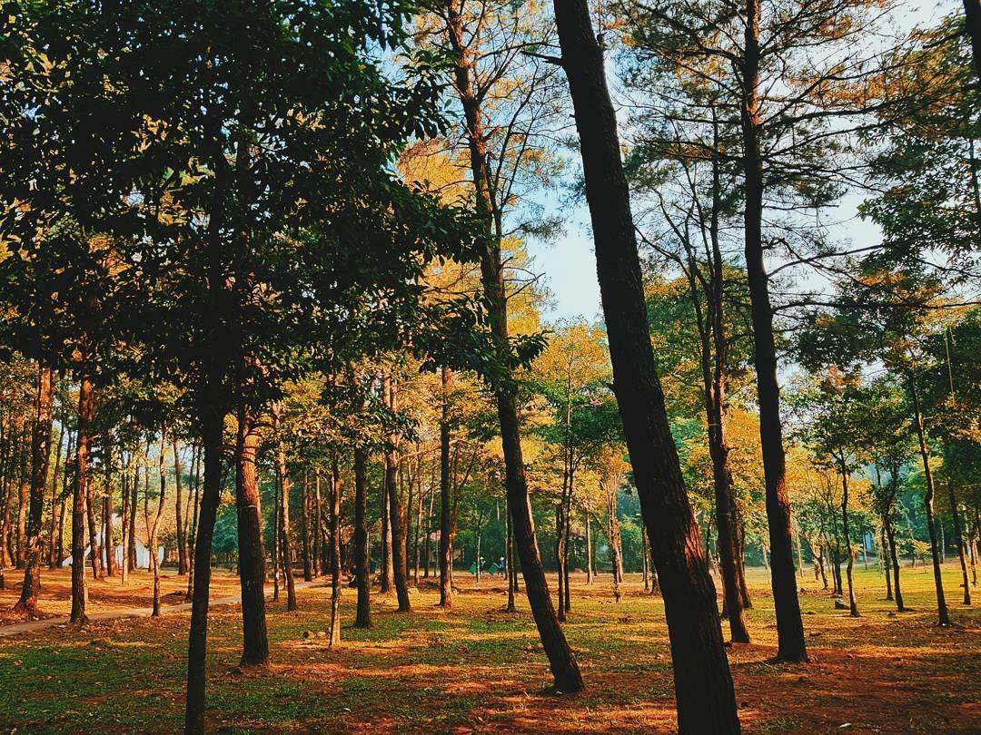 du lịch sinh thái gần hà nội vườn quốc gia ba vì