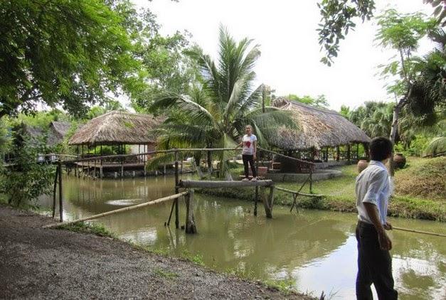 cầu khỉ tại khi du lịch sinh thái bình mỹ