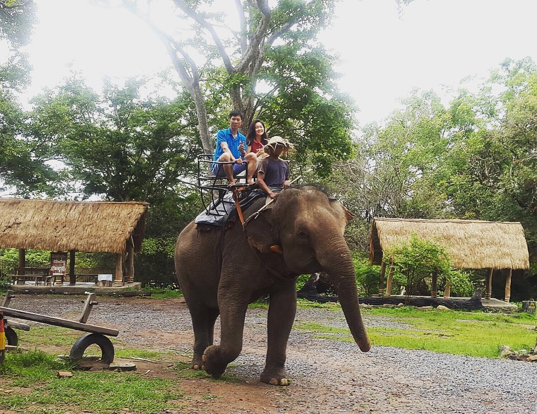 cưỡi voi tại khu sinh thái kotam