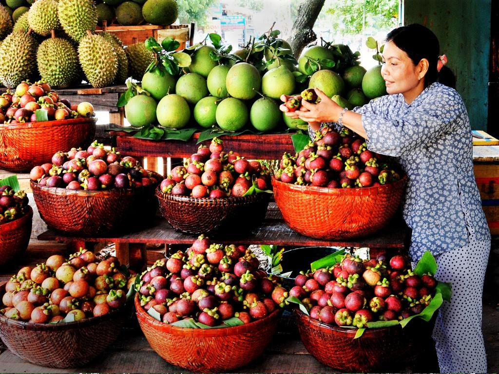 hoa quả tại khu du lịch sinh thái lái thiêu đà nẵng