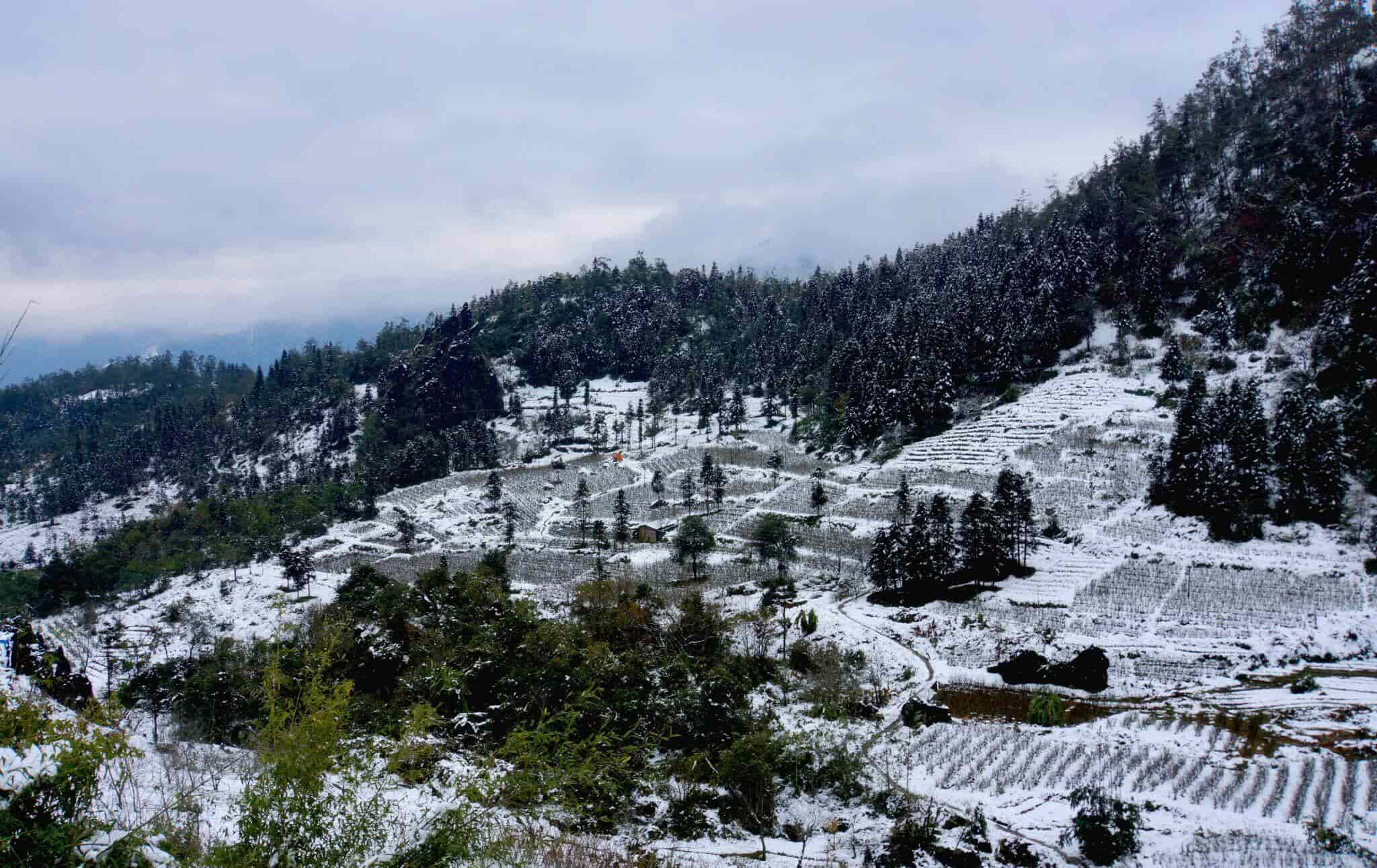 Cảnh đẹp mùa đông miền Bắc ở Sa Pa