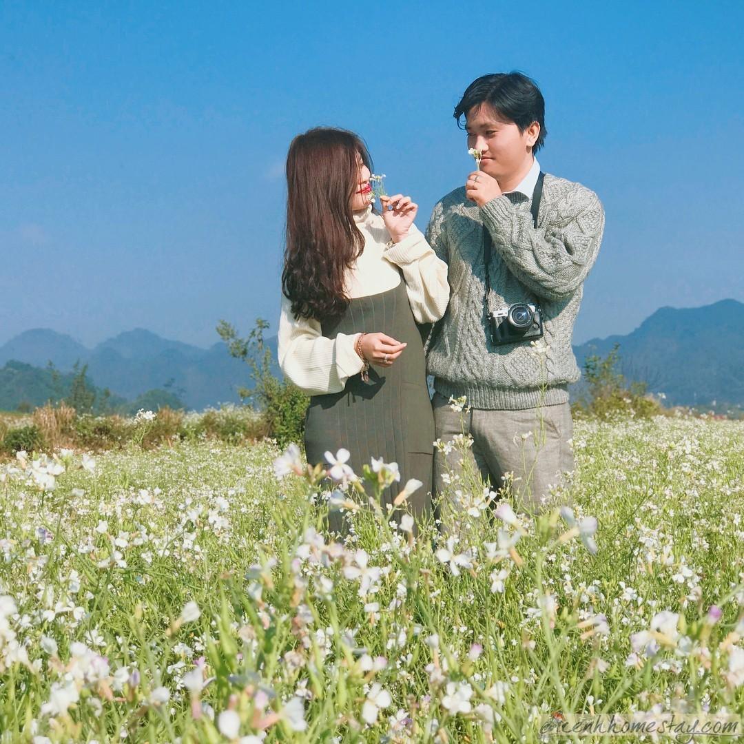 Phong cảnh mùa đông Mộc Châu