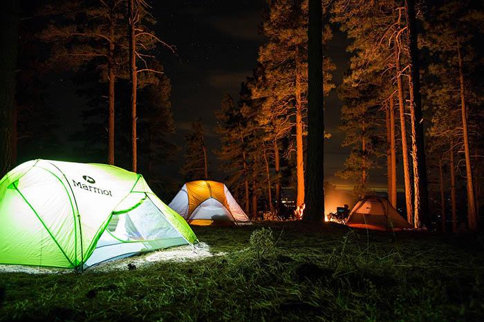 địa điểm cắm trại trong rừng Trekking